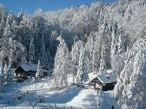 Winter im Preßnitztal, Am Wildbach