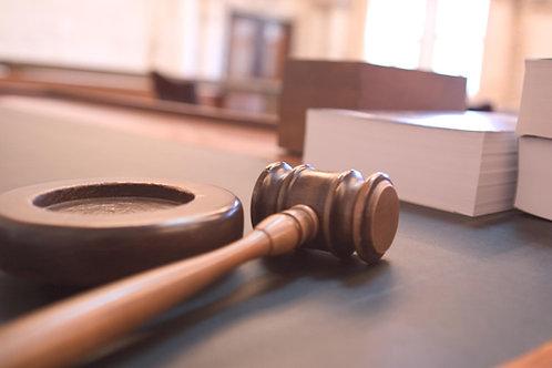Protective Order Litigation