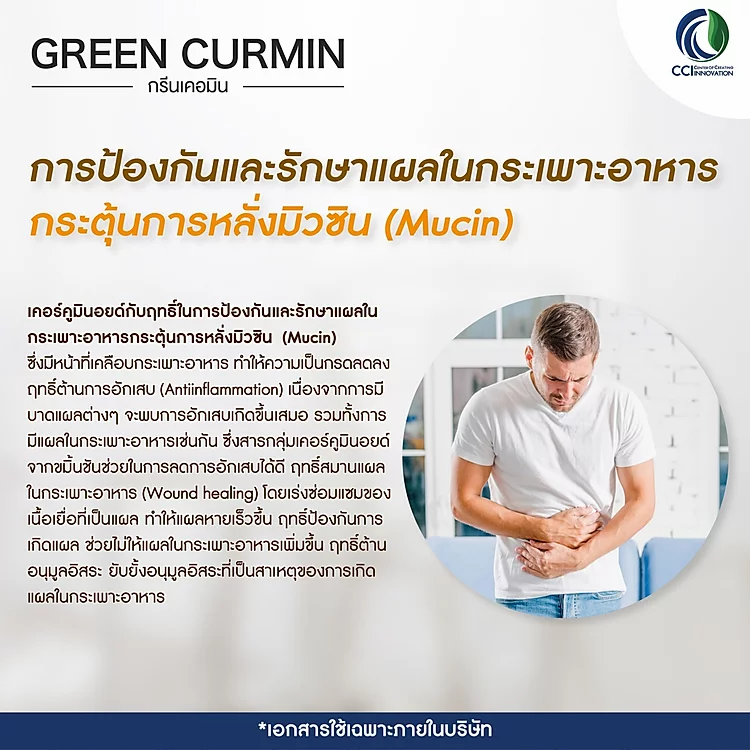 Green Curmin กรีนเคอมิน รักษาแผลในกระเพราะอาหาร และกรดไหลย้อน
