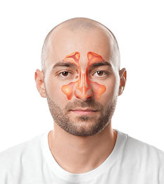 Man with illustration of paranasal sinus on white background.jpg