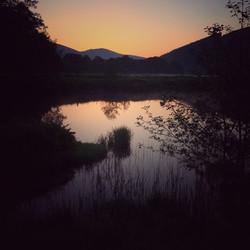 The Tweed at sunrise