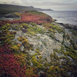 Rocks at Glen Brittle