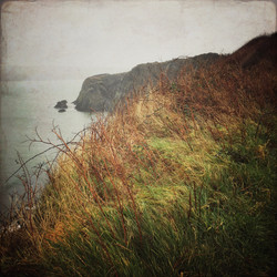 On the Coastal Path Near Pwllgwaelod