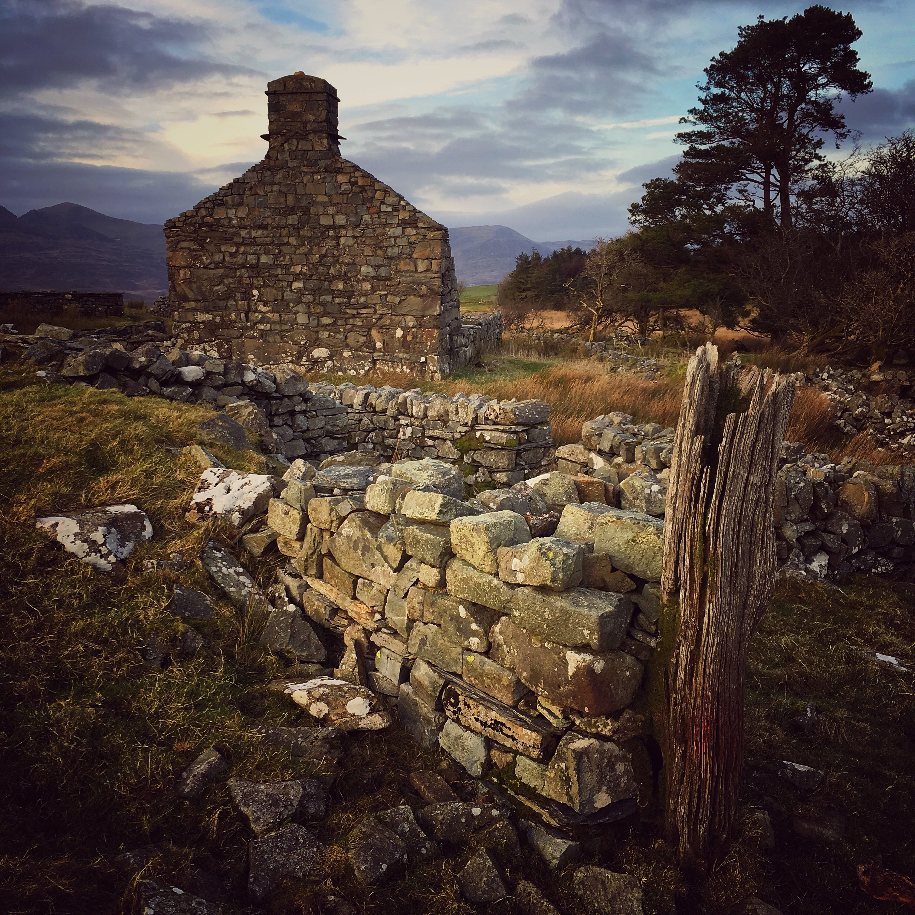 Ruined Cottage near Trawsfynydd