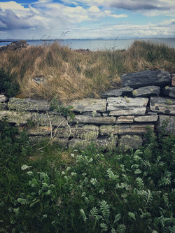 Deserted croft on Berneray