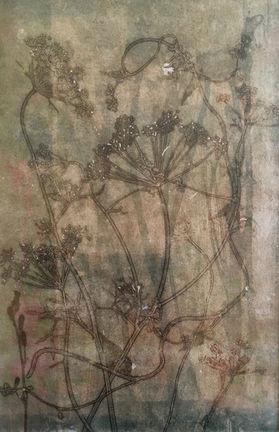 Amii Majus, unique nature monoprint