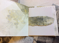 Hand-made books from Monoprints