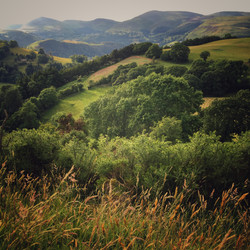 In the hills south of Llangollen
