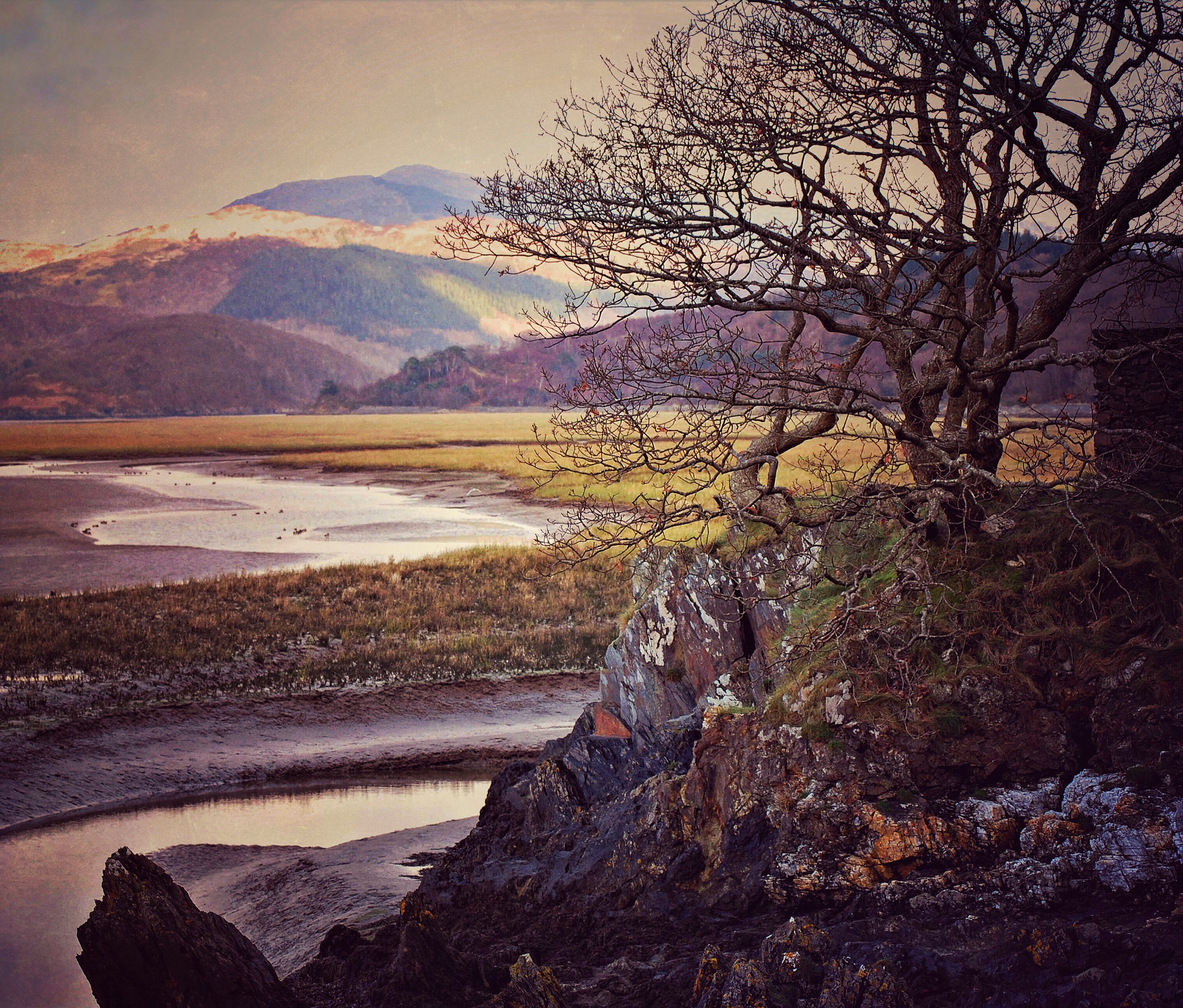 On the Mawddach Estuary