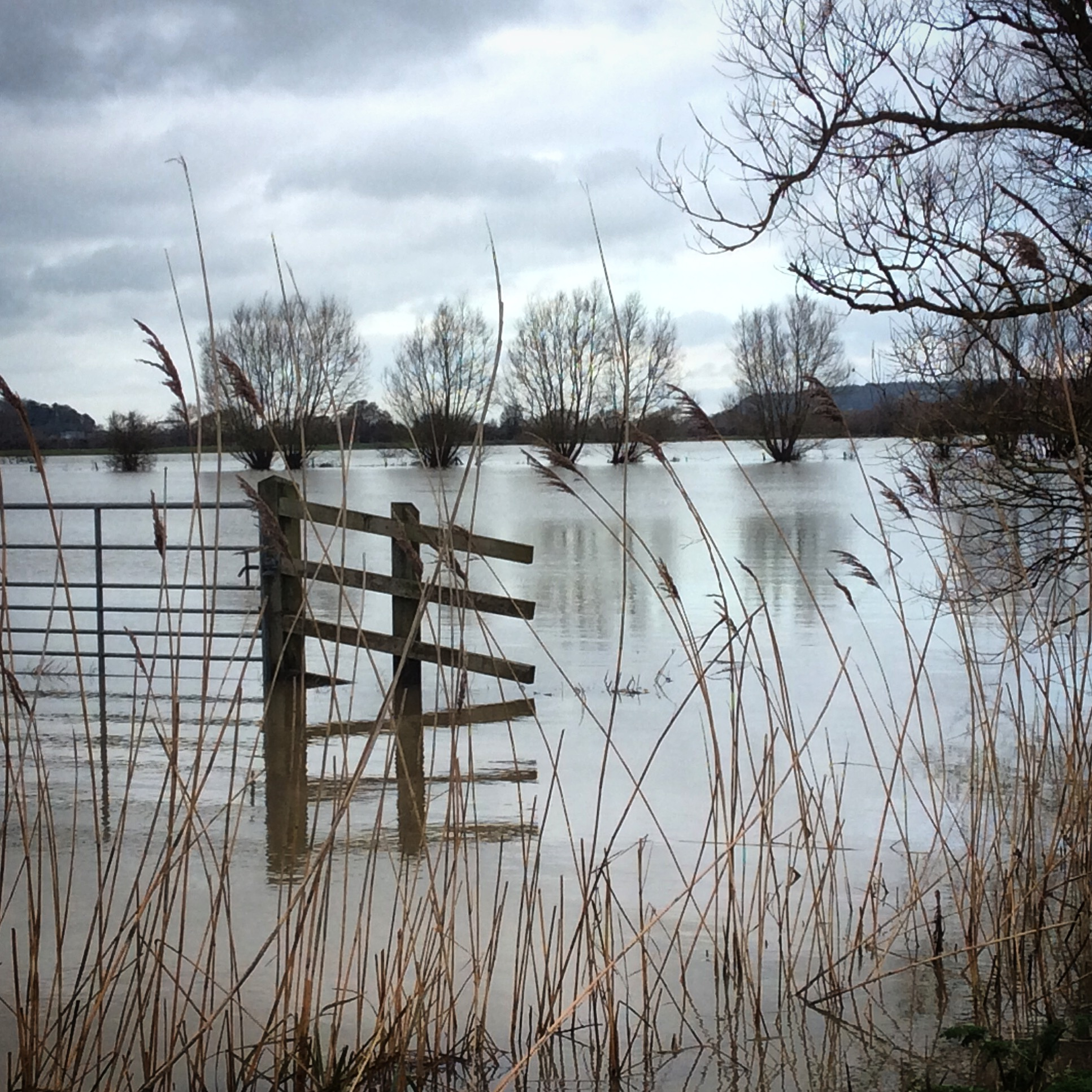 Floods on the Levels, Somerset