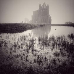 Whitby Abbey Pool in Fog