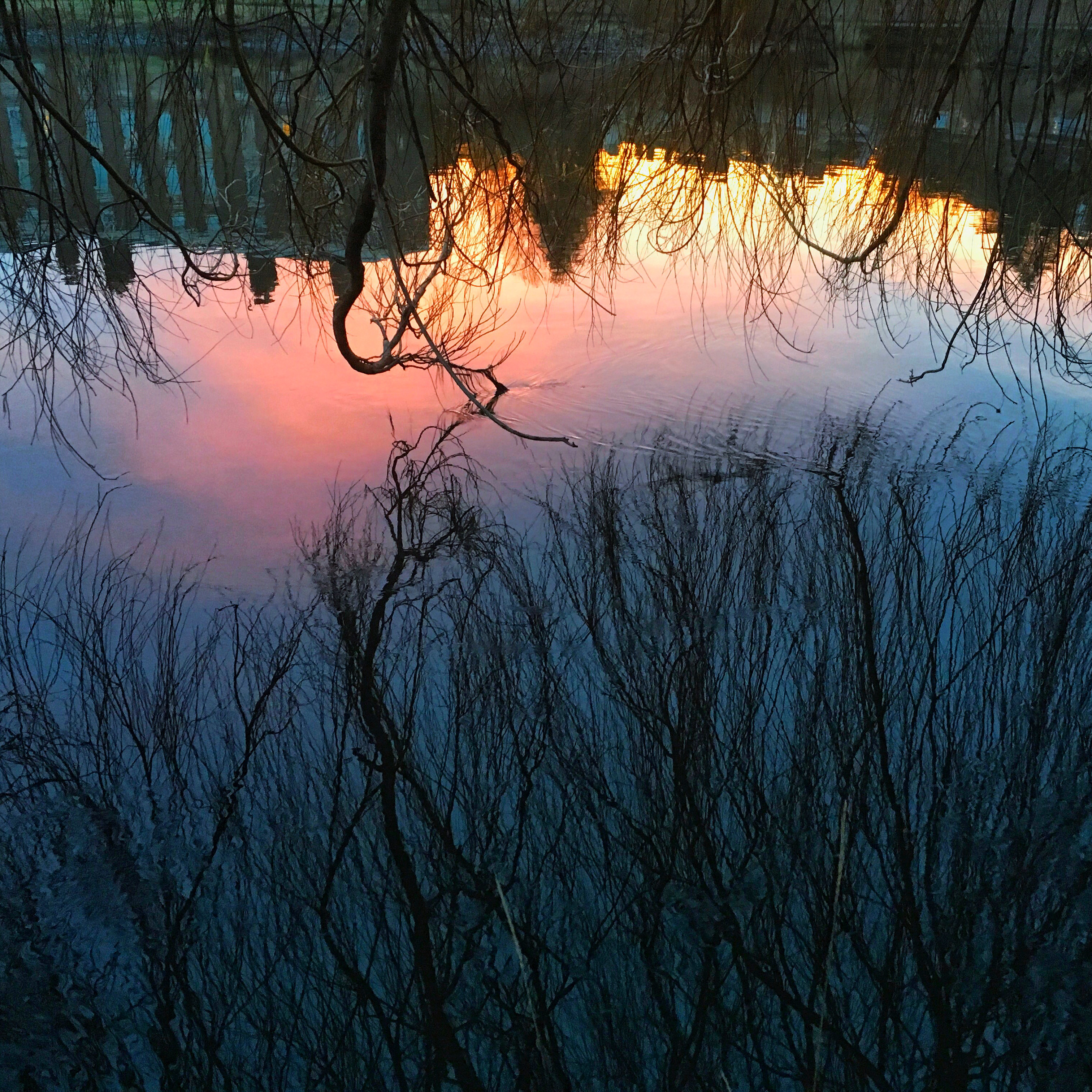 Sunset on the Severn, Shrewsbury