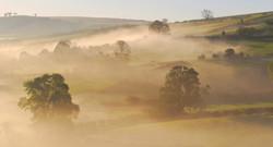 redlake valley in mist - no sheep