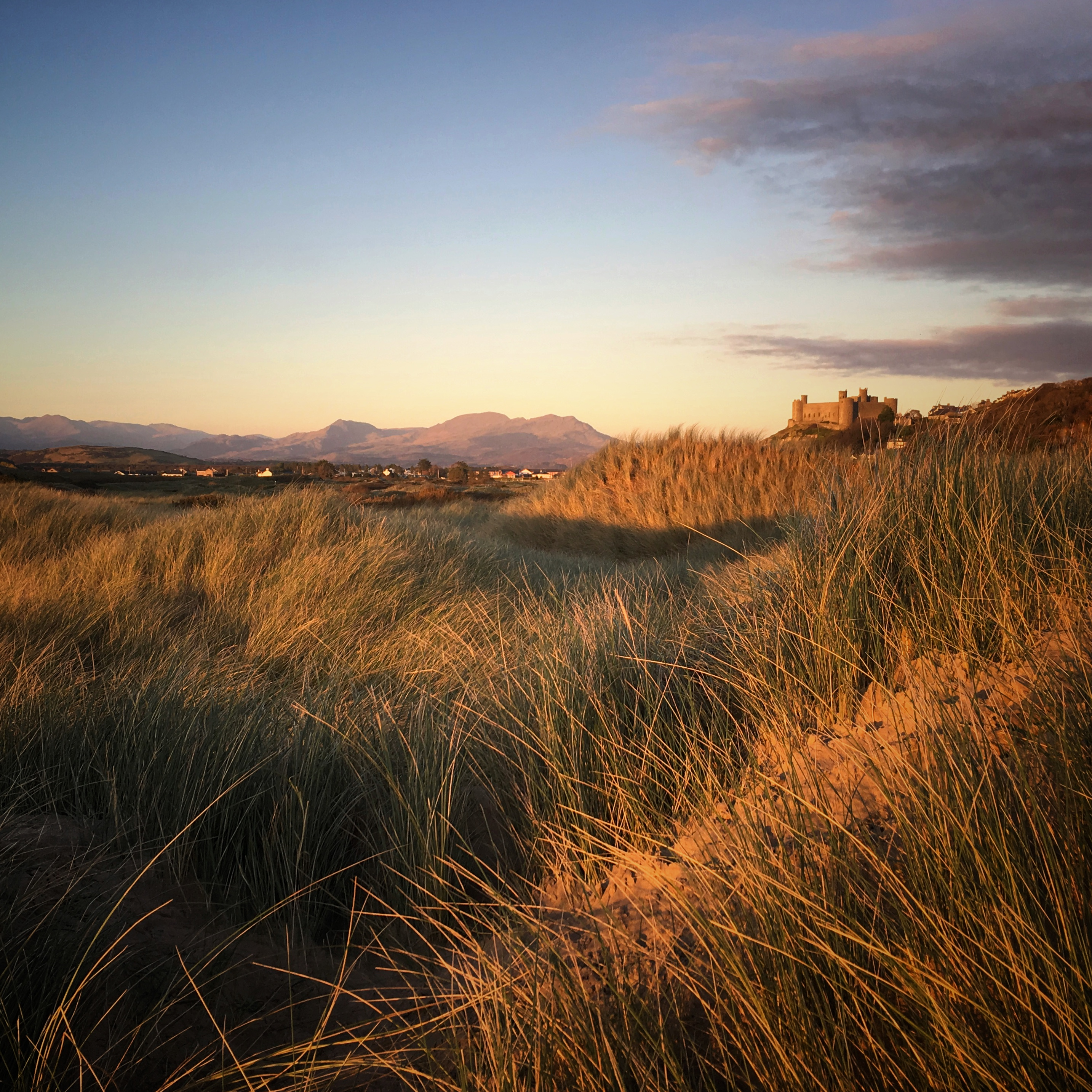 Harlech Castle in Evening Light