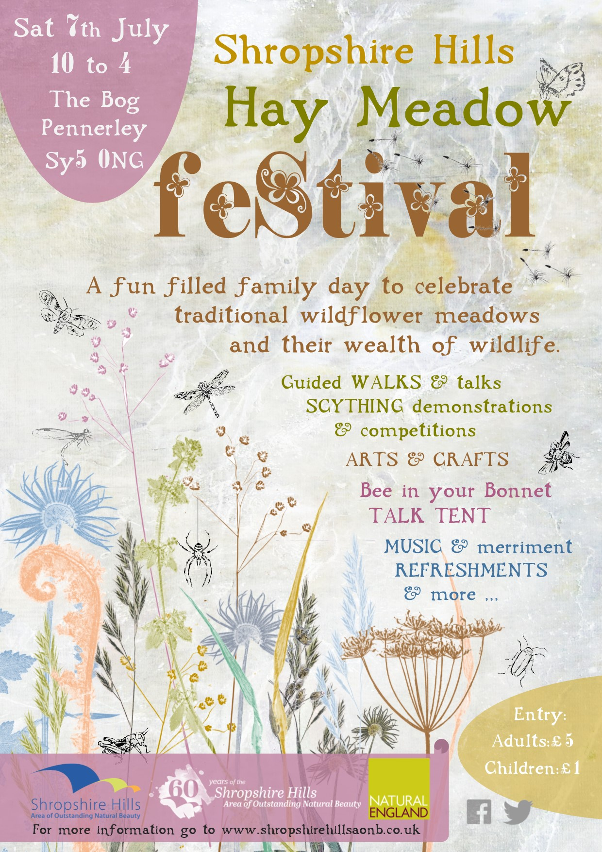 AONB Hay Meadow Festival poster