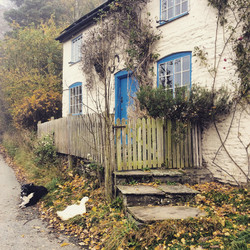Little Cottage, Dog and Duck, Pentre