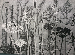 Summer Meadow - Monoprint