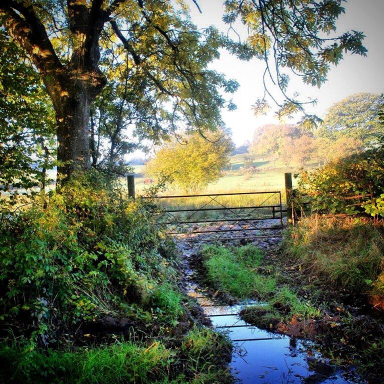 Lower Splashes in Autumn Sunshine