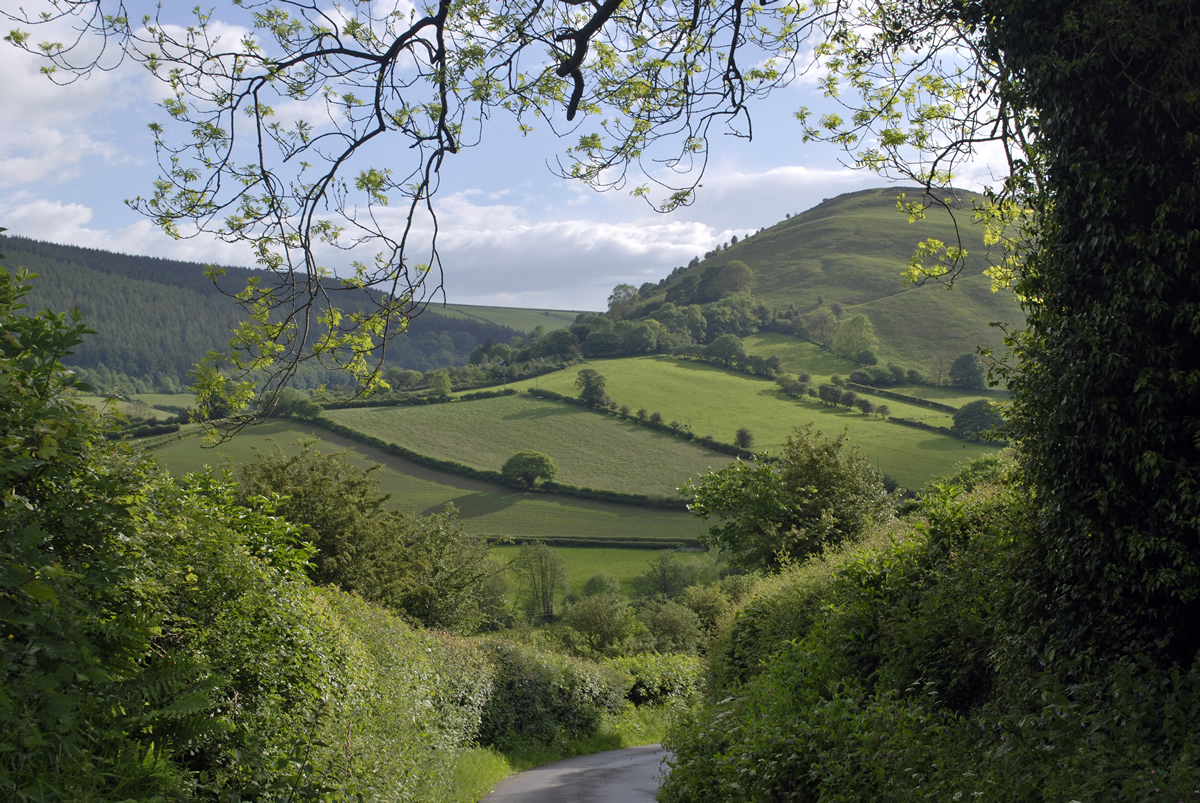 Caer Caradoc from Pentre Hodre Hill
