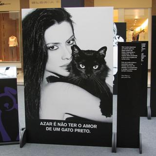 Exposição AMPARA Animal