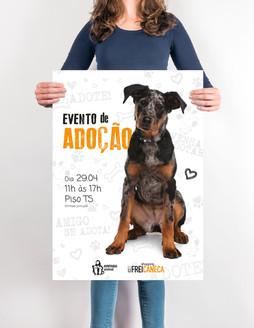 Design para campanha de adoção