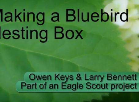 Video: Making a Bluebird Nesting Box by Owen Keys