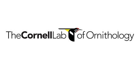 cornell lab of ornithology.jpg