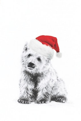 InterAct Polar Bear Christmas Card Pack of 10
