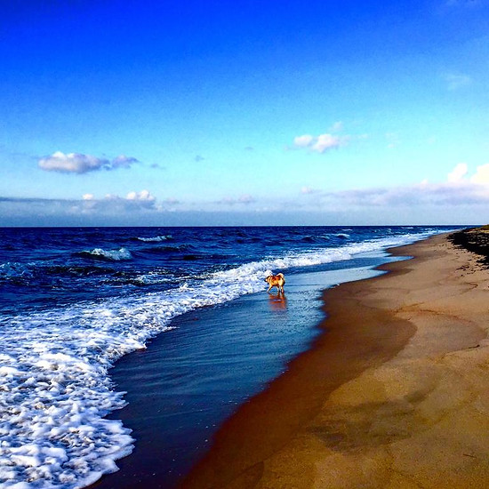 Stranden 125 meter væk