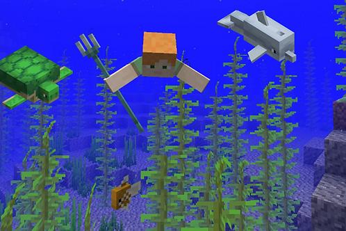 Marine Biology with Minecraft - 4 weeks