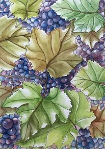 Grapes of Joy