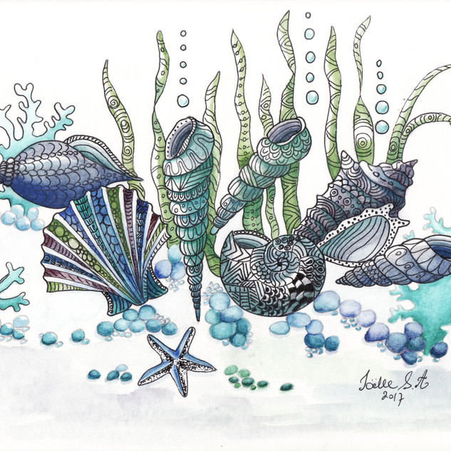 Seashells 1. Ink and Watercolour