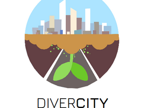 What is DiverCity