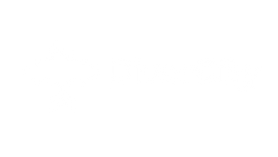DiverCity Logo AllWhite.png