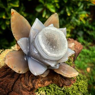 Agate Lotus.JPG