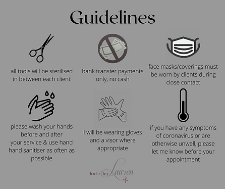 mobile hairdressing guidelines (2).png