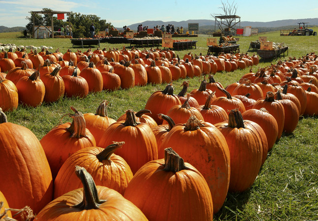A Hokie's Guide To October Events
