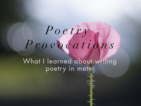 Poetry Provocations