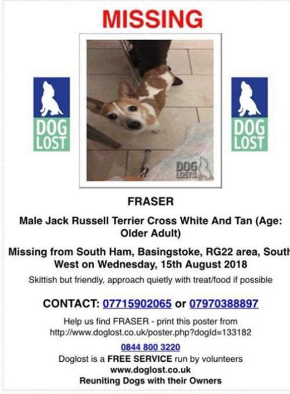 lost dog - Aug 2018.jpg