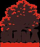 Logo Instituto Suinã.png