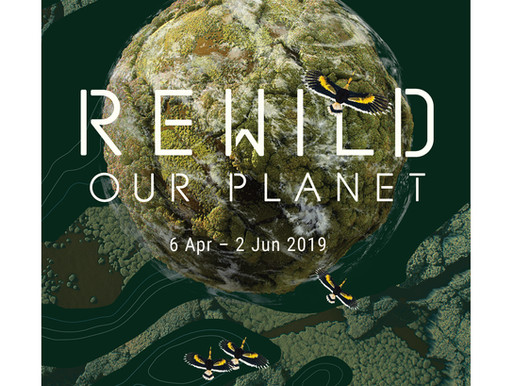 REWILD Our Planet Exclusive Preview