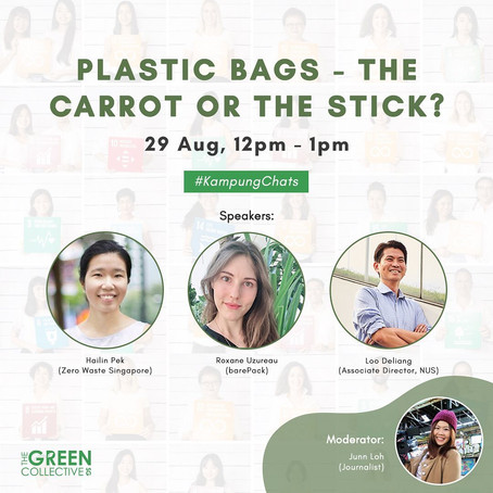 Plastic bags: the carrot or the stick? (Article + video)
