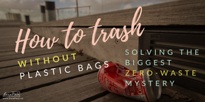 how-to-trash-singapore-plastic-free-guide