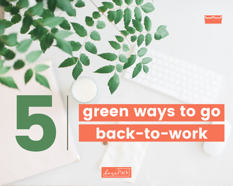 Back to work: 5 sustainable office resolutions