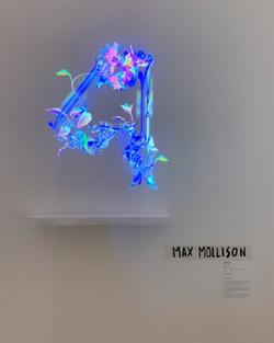 Max Mollison
