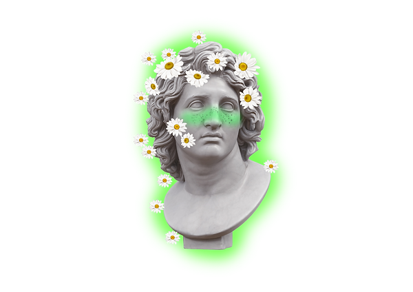 DAISY PNG.png