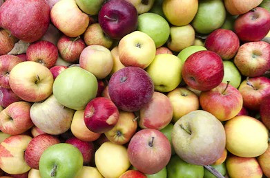 A fall tradition: Detroit native launches city's first cider mill