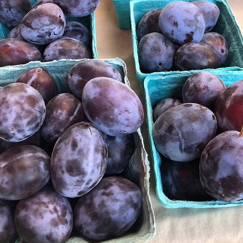 Organic black empress plums