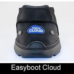 Cloud Logo.jpg