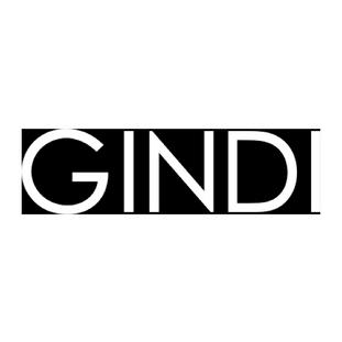 גינדי_1x.png